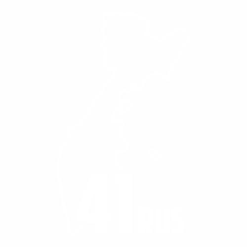 41 Регион - №3
