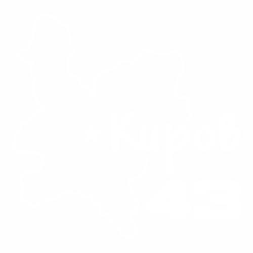43 Регион - №1
