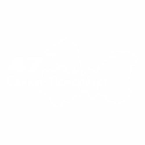 47 Регион - №1