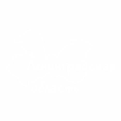 47 регион - №2