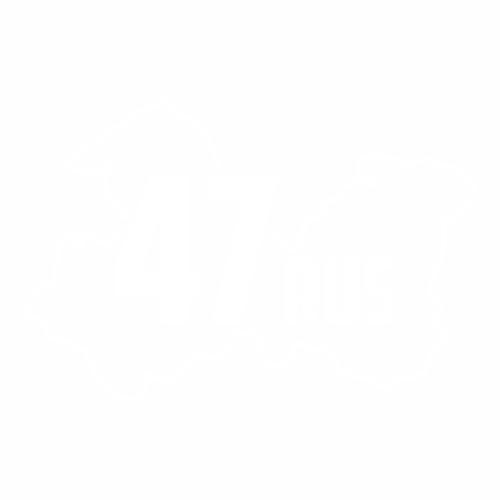 47 Регион - №3