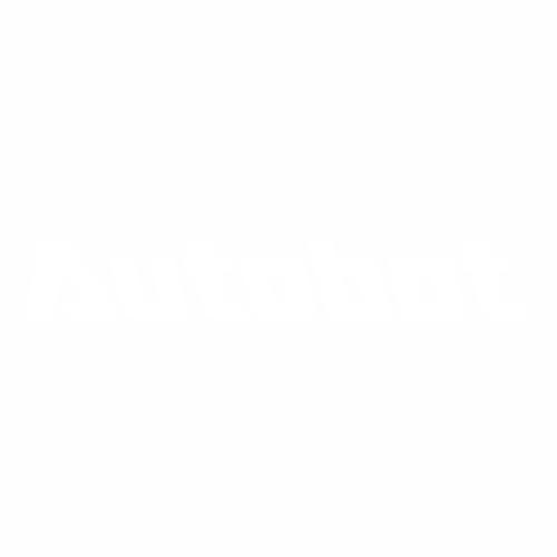Автобот надпись - 2
