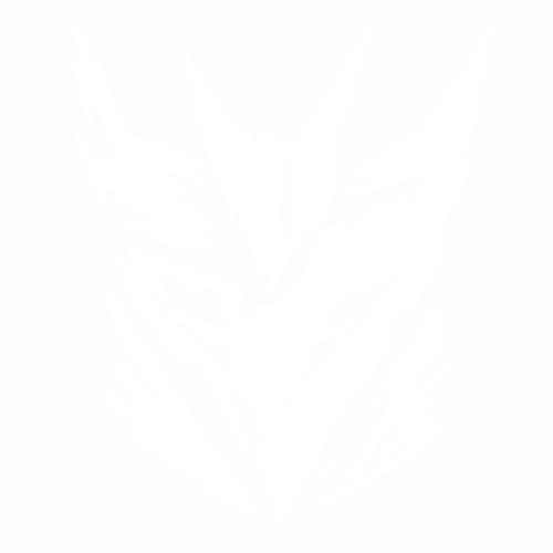 Desepticon distroyed logo