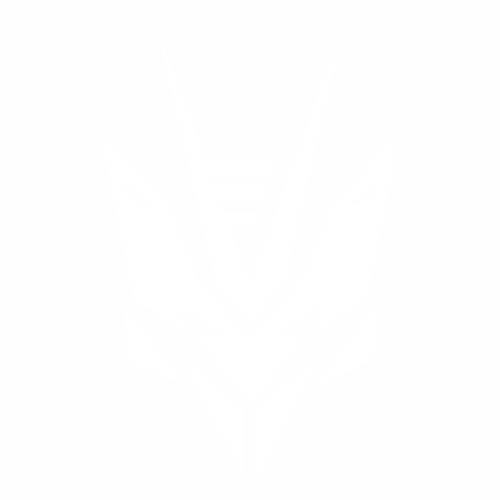 Desepticon Transtech logo