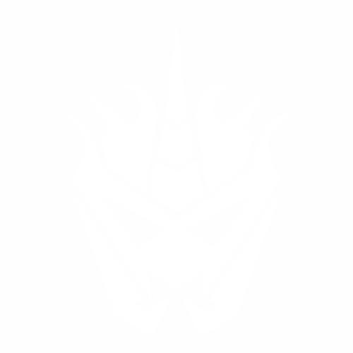 Desepticon N/A