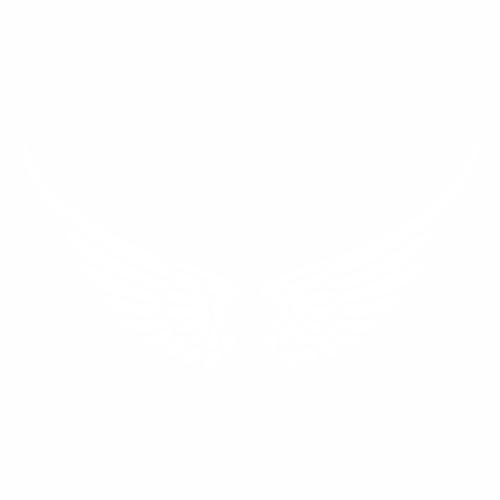 Крылья - 2