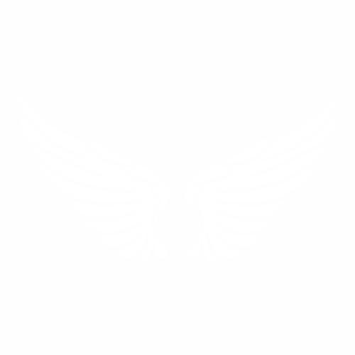 Крылья - 3