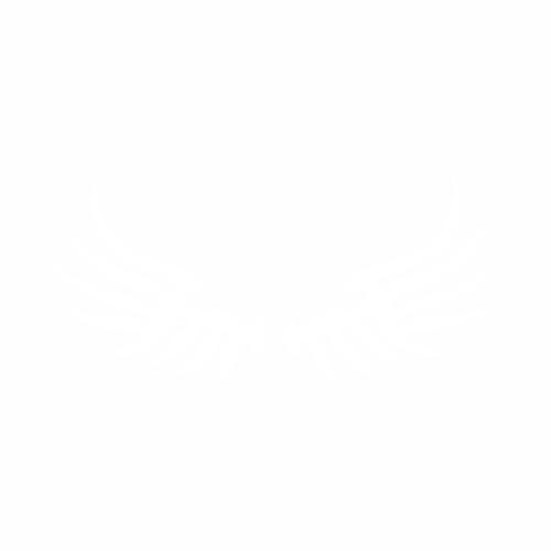 Крылья - 4
