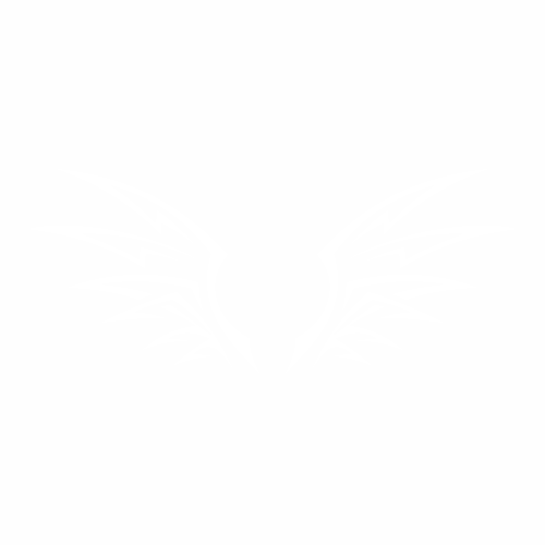 Крылья - 5