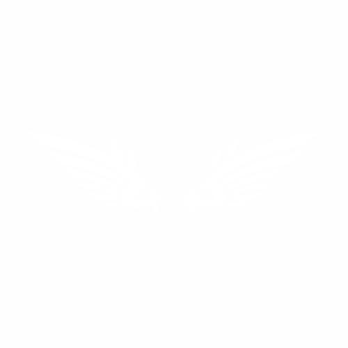 Крылья - 6