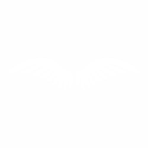 Крылья - 8