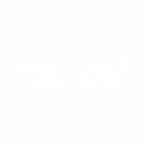 Крылья - 10