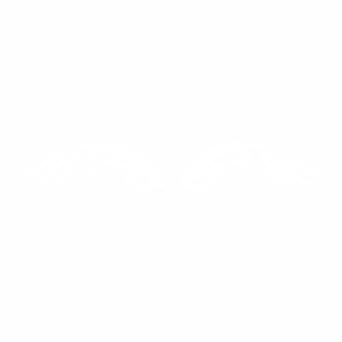 Крылья - 11