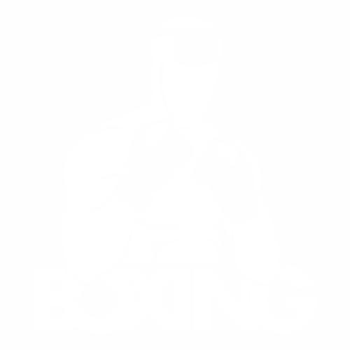 Бокс - 2