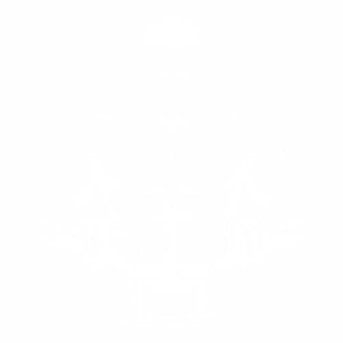 Бокс - 15