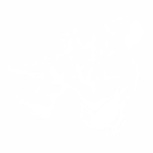 Бокс - 16