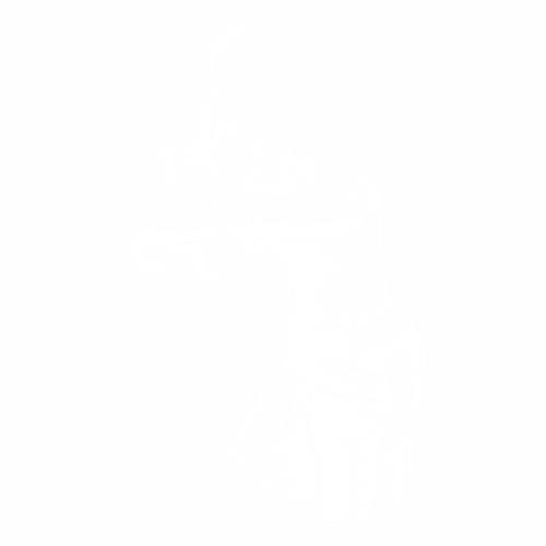 Бокс - 17