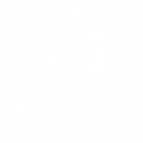 Бокс  - 18