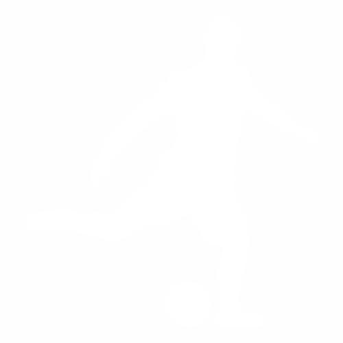 Футбол - 15