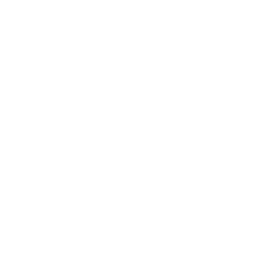 Футбол - 20