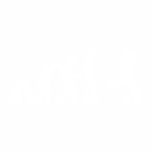 Футбол - 24