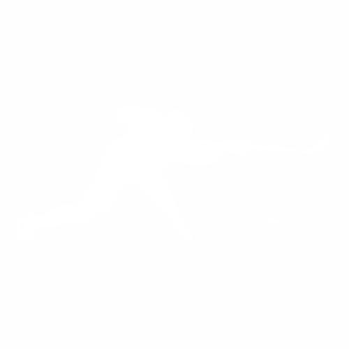 Хоккей - 13