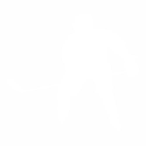 Хоккей - 19