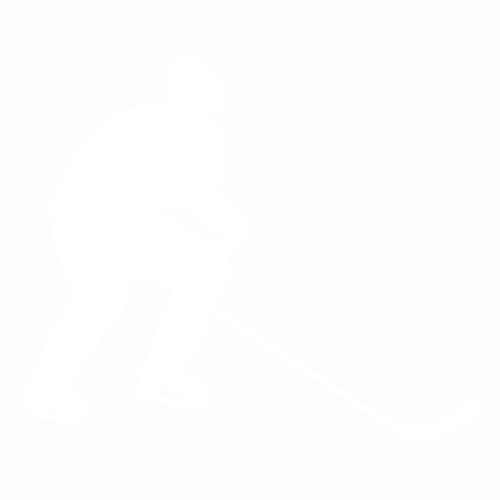 Хоккей - 29