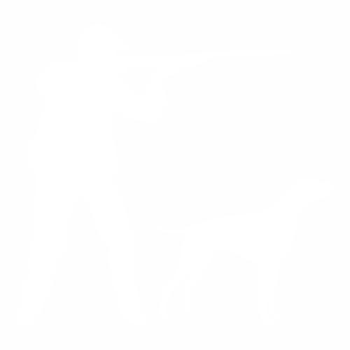 Охота - 1
