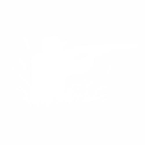 Охота - 4