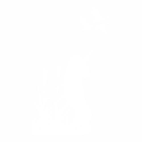 Охота - 6